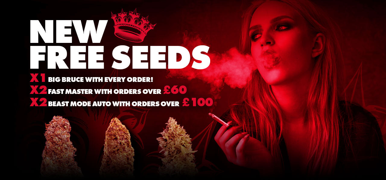New Free Seeds
